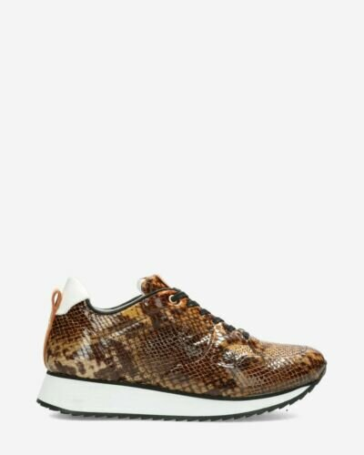 Sneaker with brown snake print